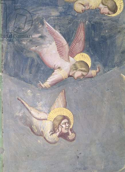 Angel, from the Lamentation, c.1305 (fresco) (detail of 56296)