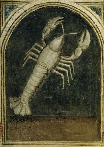 Cancer - Astrology Artist Unknown Palazzo della Ragione, Padua, Italy