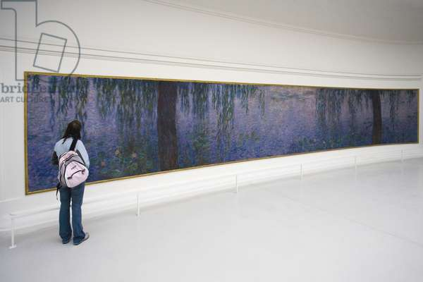 the Exhibition of the 'Nympheas' at the Musee de l'Orangerie in Paris (photo)