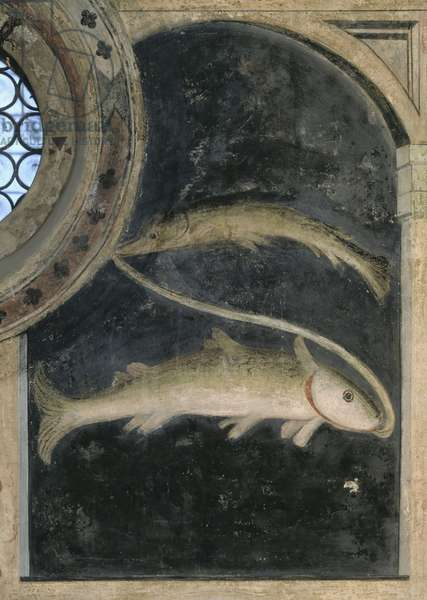 Pisces - Astrology (fresco)