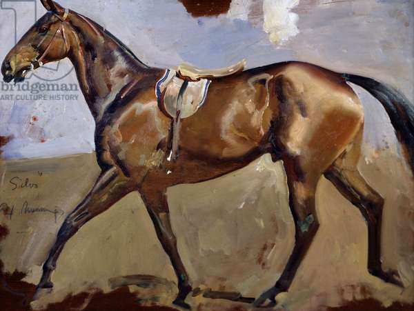 Study Of Silvo (Chestnut Racehorse) (oil on canvas)