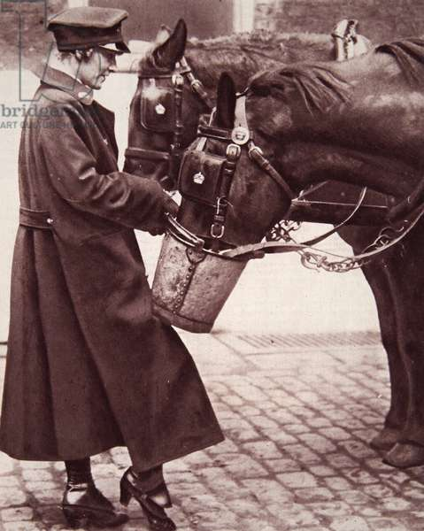 Work for women with a knowledge of horses, illustration from 'The Illustrated War News', 7th March 1917 (sepia photo)