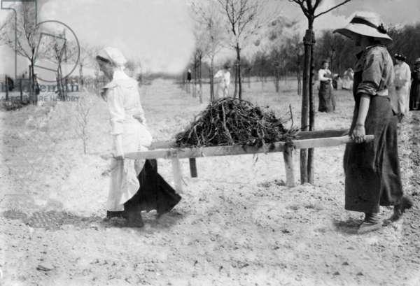 Women carrying firewood on a stretcher, c.1914-1918 (b/w photo)