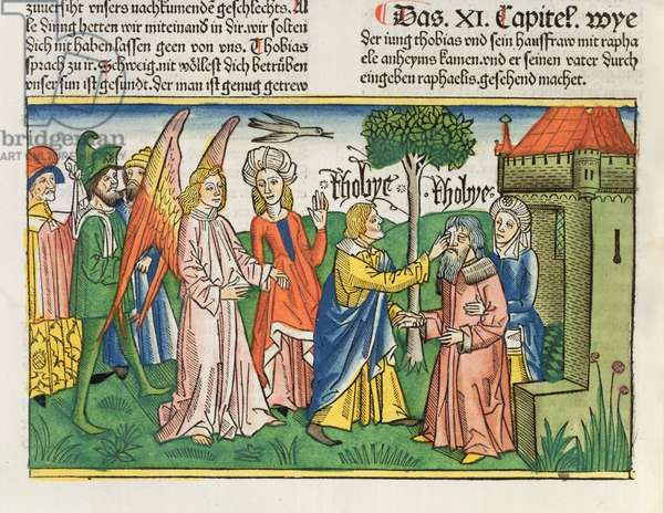 Apocrypha: Tobias restores his father Tobit's sight with the gall of a fish, from the 'Nuremberg Bible (Biblia Sacra Germanaica)' (coloured woodcut)