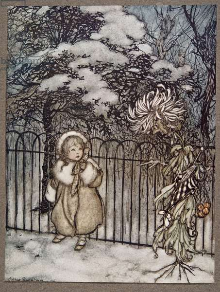 "A chrysanthemum heard her, and said pointedly, ""Hoity-toity, what is this?"", from Peter Pan in Kensington Gardens by J M Barrie (1860 - 1937), pub. 1906 (colour litho)"