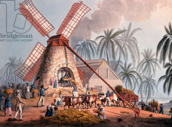 The Millyard, from 'Ten Views in the Island of Antigua', 1823 (hand-coloured litho)