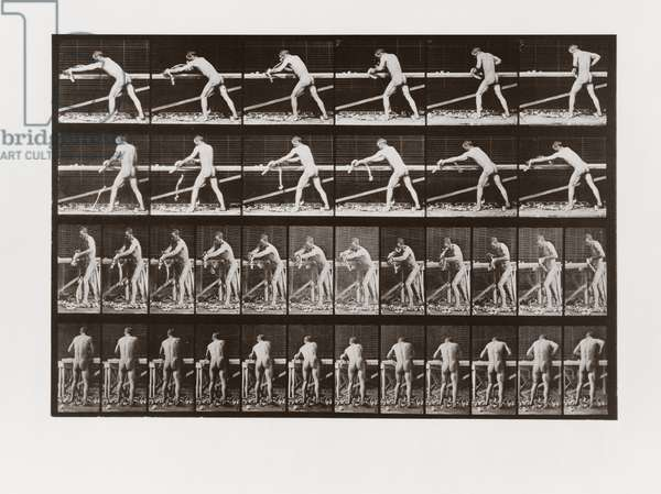 Man planing wood, Plate 379 from Animal Locomotion, 1887 (b/w photo)