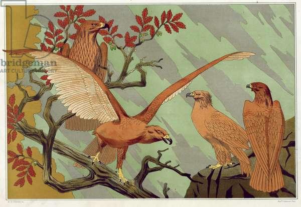 Eagles, from 'L'Animal dans la Decoration' by Maurice Pillard Verneuil, pub. 1897 (colour lithograph)