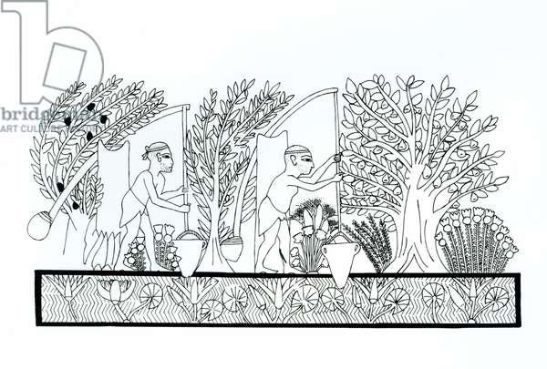 An ancient Egyptian garden (engraving) (b/w photo)