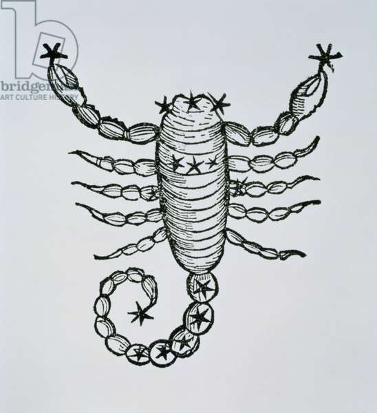 Scorpio (the Scorpion) an illustration from the 'Poeticon Astronomicon' by C.J. Hyginus, Venice, 1485 (woodcut)