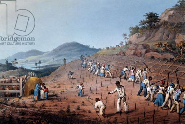 Breaking up the Land, from 'Ten Views in the Island of Antigua', 1823 (hand-coloured litho)