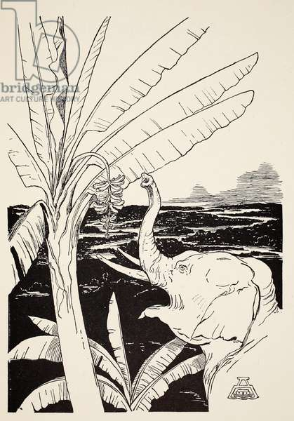 The Elephant's Child going to pull bananas off a banana-tree after he had got his fine new trunk, illustration from 'Just So Stories for Little Children' by Rudyard Kipling, pub. London, 1951 (litho)
