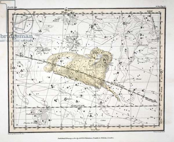 The Constellations (Plate XIII) Aries and Musca Borealis, from 'A Celestial Atlas' by Alexander Jamieson, pub. London 1822 (hand coloured engraving)