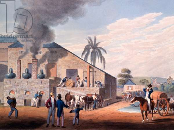 Slaves set to work producing rum at the distillery, from 'Ten Views in the Island of Antigua', 1823 (hand-coloured litho)