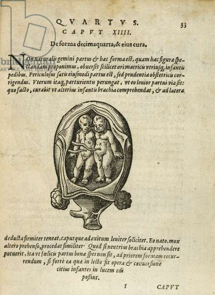 Non-Identical Twins in the Womb, illustration from chapter 14, Book 4 of 'On the Conception and Growth of Man' by Rueff, 1587 (engraving)
