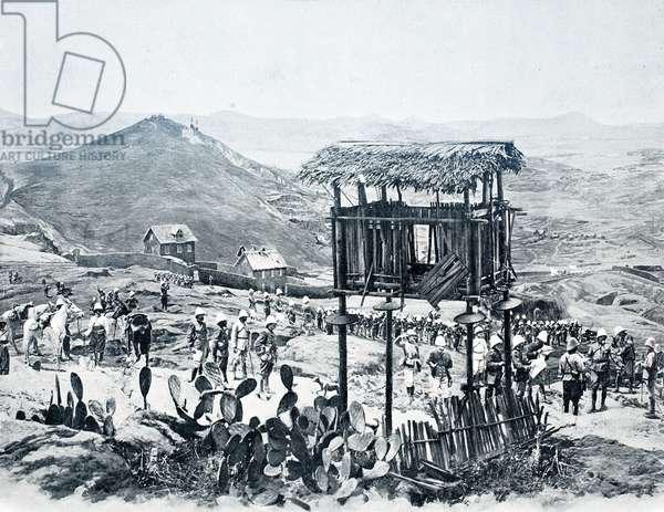 Landscape of Madagascar, Exposition Universelle, Paris, 1900 (b/w photo)