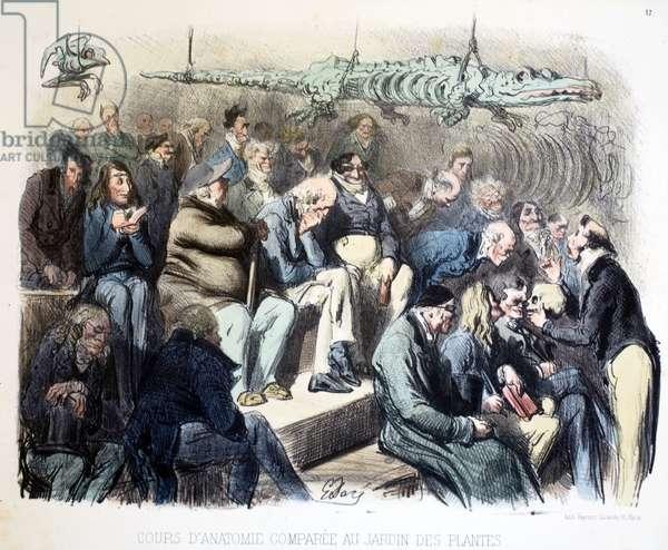 Cours d'anatomie comparee au jardin des plantes, Les différents publics de Paris, 1854 (colour litho)