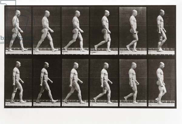 Man walking, Plate 6 from Animal Locomotion, 1887 (photograph)