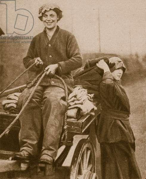 Women work force driving a cart, 1914-19 (b/w photo)