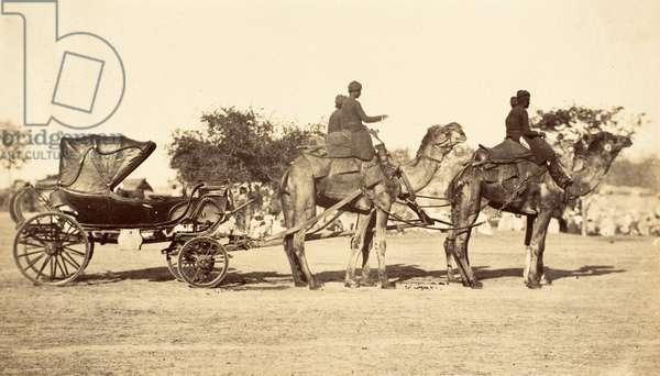 Camel Carriage, c.1860 (photogravure)