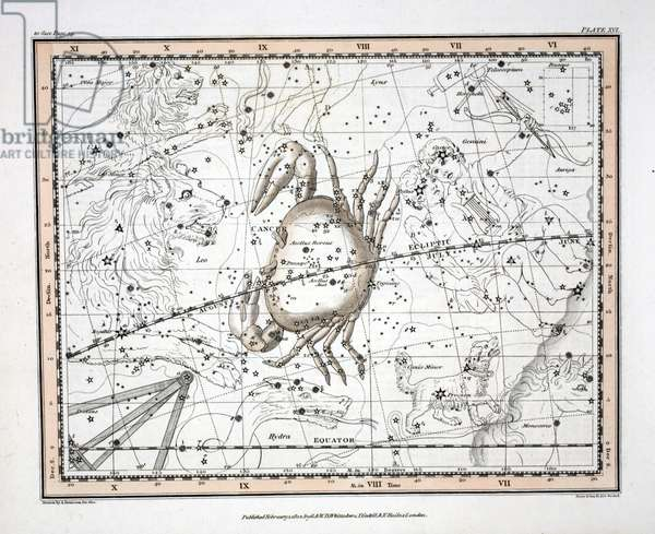 The Constellations (Plate XVI) Cancer, from 'A Celestial Atlas' by Alexander Jamieson, pub. London 1822 (hand coloured engraving)