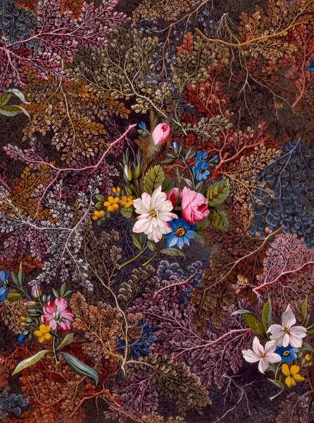 Textile design, c.1788-92 (w/c on paper)