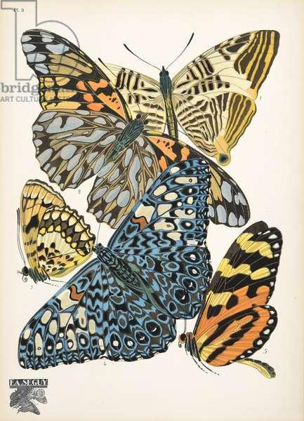 Plate 3, from Papillons, pub. 1925 (pochoir print)