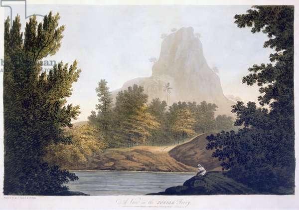 View of the Jungle, 1788 (aquatint)