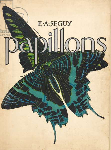 Front Cover from Papillons, pub. 1925 (pochoir print)