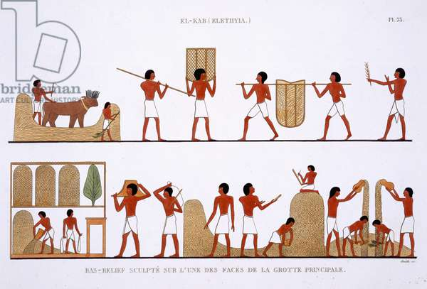 Transporting, Storing and Recording the stores of Grain, from a Rare Record of Frescoes from Thebes, recorded 1819-1822 on his second visit to Egypt by Frederic Cailliaud (1787-1869), colour litho