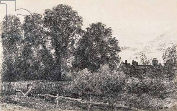 Landscape with Elm Tress and a House (graphite on paper)