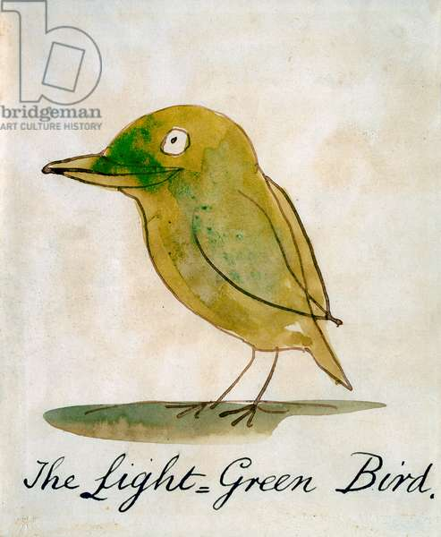 The Light Green Bird, from 'Sixteen Drawings of Comic Birds' (pen & ink w/c on paper)