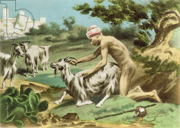 Ancient Greek sodomising a goat, plate XVII from 'De Figuris Veneris' by F.K. Forberg, pub. 1900 (hand coloured lithograph)
