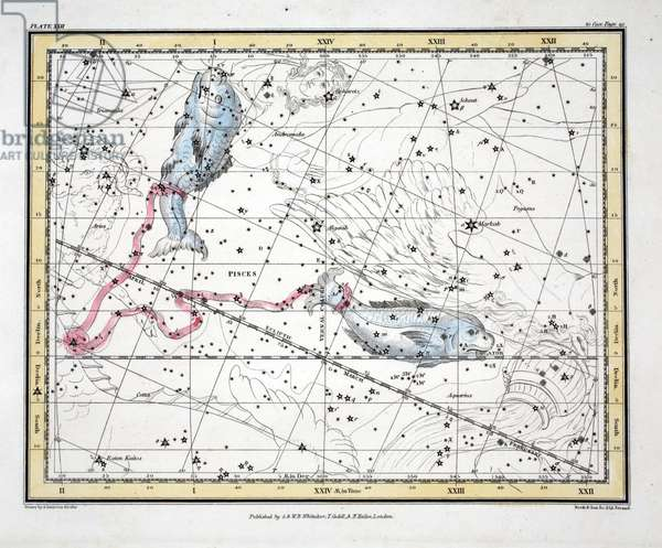 The Constellations (Plate XXII) Pisces, from 'A Celestial Atlas' by Alexander Jamieson, pub. London 1822 (hand coloured engraving)