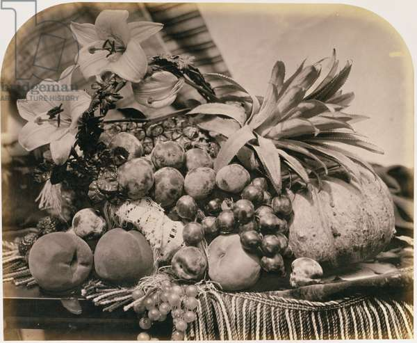 Still Life with Fruit, 1860 (sepia photo)