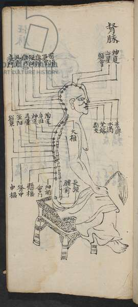Acupuncture points along the spine and head, from Jing Guan Qi Zhi, 'The beginnings and ends of acupuncture points and channels', pub. Southern China, early 18th century (ink on paper)