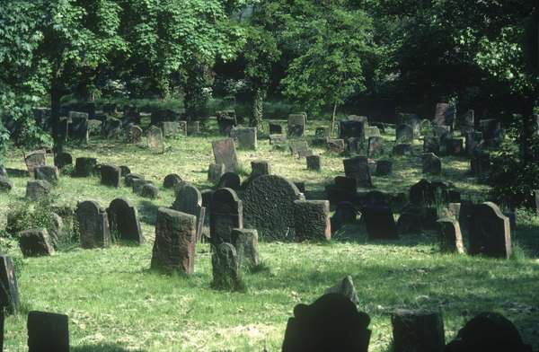 View of the Jewish cemetery (photo)