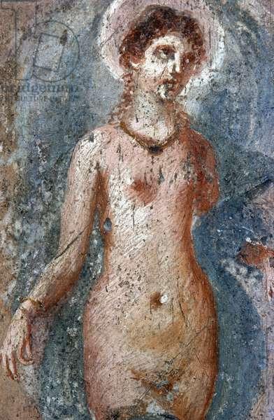 Selene (fresco) (detail of 270403)