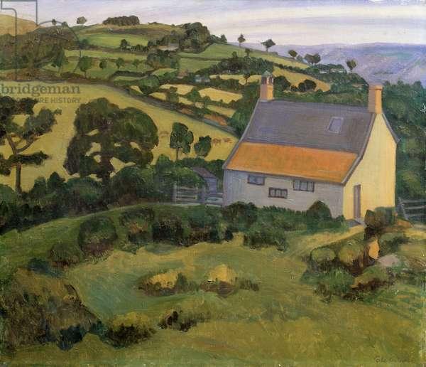 Dumpdon Hill, Devon c.1920 (oil on canvas)
