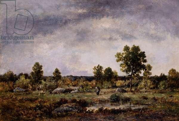 Landscape, 19th century (oil on panel)