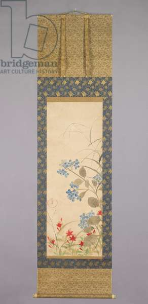 Summer Grasses and Flowers, Edo Period, early to mid-18th century (hanging scroll: ink & colour on paper)