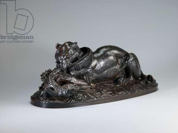 Tiger Devouring a Gavial, 1831 (bronze)