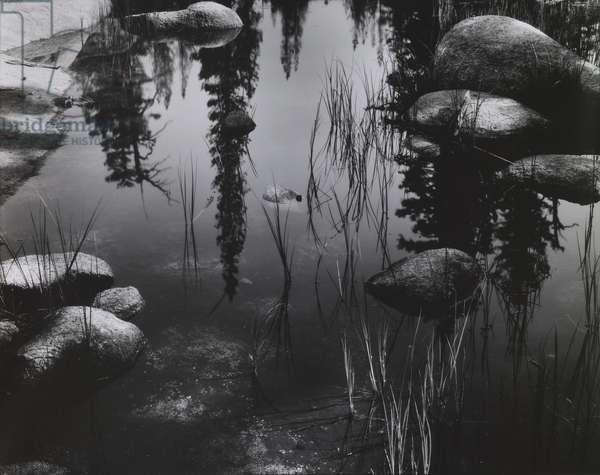 Pond, High Sierra, 1963 (gelatin silver print)