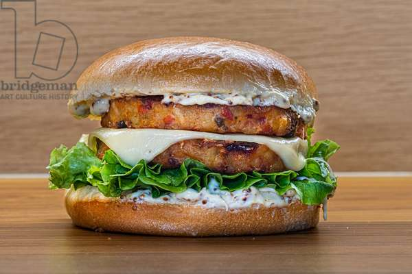 Vegetarian burger (photo)
