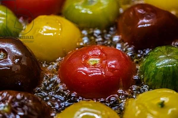 Colourful tomatoes, Dijon, France, June 2019 (photo)