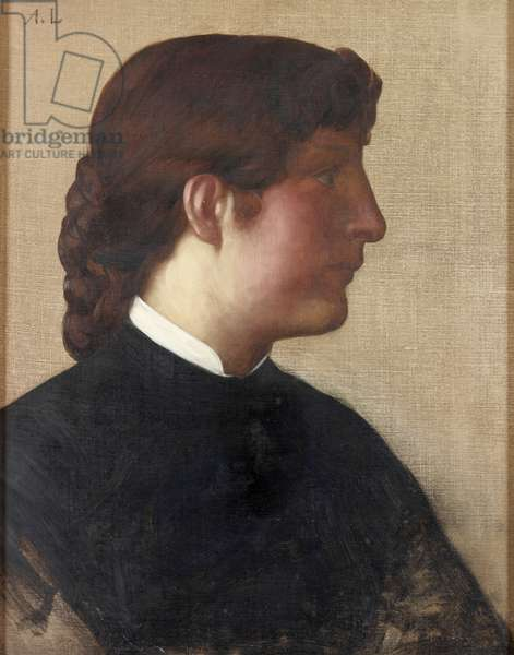 Portrait of a Lady, c.1879 (oil on canvas)