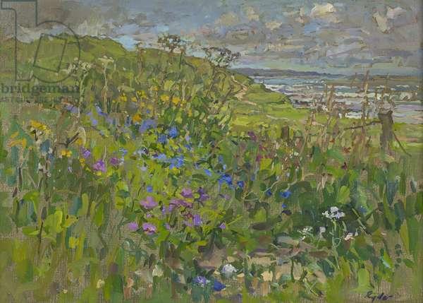 Headland Flowers near Berwick (oil on canvas)