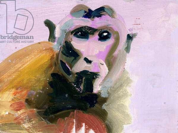 Macaque, 2004 (acrylic on board)