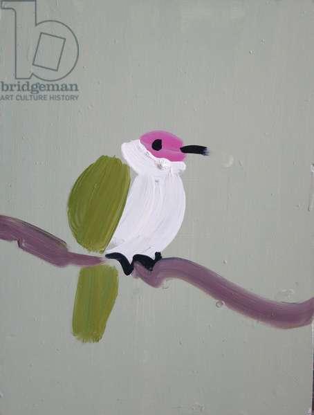 Beautiful Fruit Dove, 2013 (oil on board)