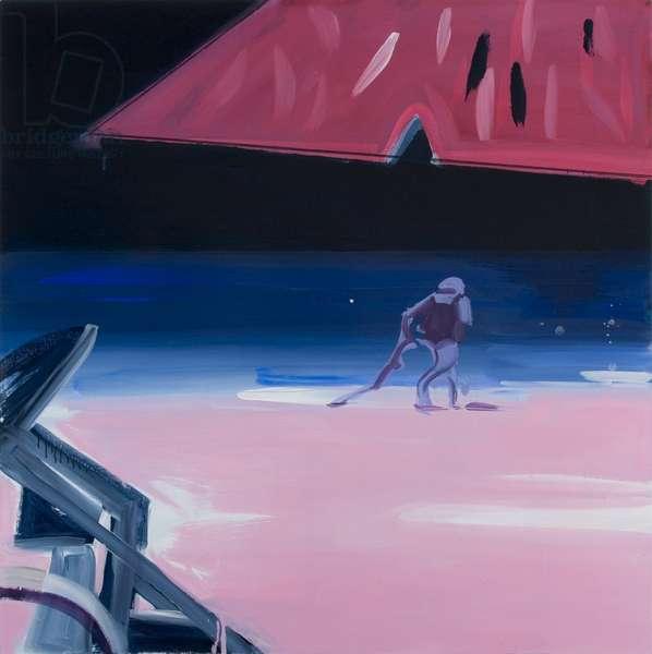 Pink Beach, 2006 (acrylic on canvas)